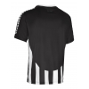 Футболка SELECT Argentina player shirt s/s striped