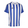 Футболка SELECT Argentina player shirt s/s striped