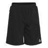 Шорти SELECT Torino sweat shorts